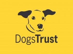 Dogs Trust Logo - Yellow background - DT below dog B